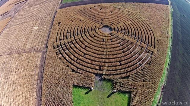 Maislabyrinth 2021