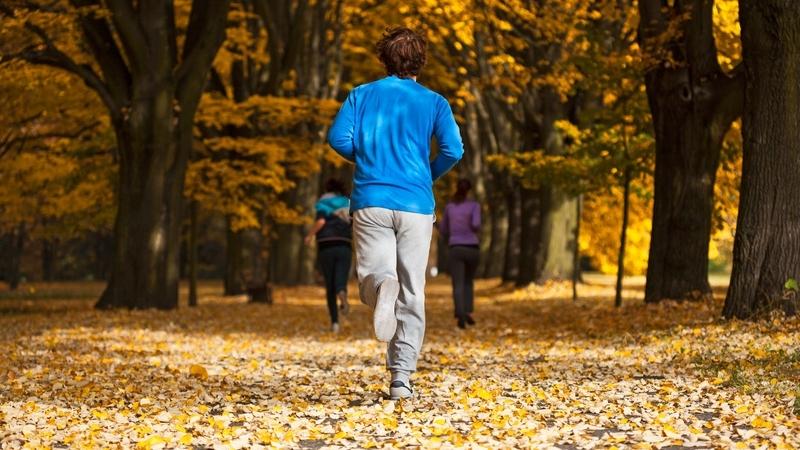 Gdzie i kiedy amatorzy biegania z Wrocławia i z okolic będą mogli wystartować w 2018 r.?