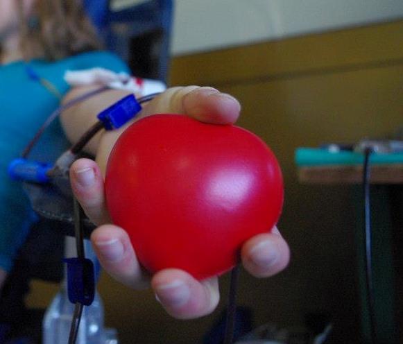 Zbiórka Krwi Pomoc Nie Ma Narodowości Wwwwroclawpl