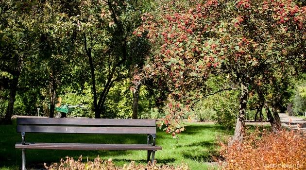 Botanischer Garten Der Universität Breslau   Www.Wroclaw.Pl