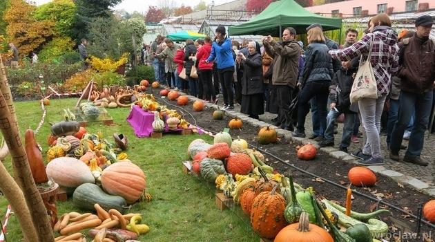 Pumpkin festival at botanical garden programme www - Botanic gardens pumpkin festival ...