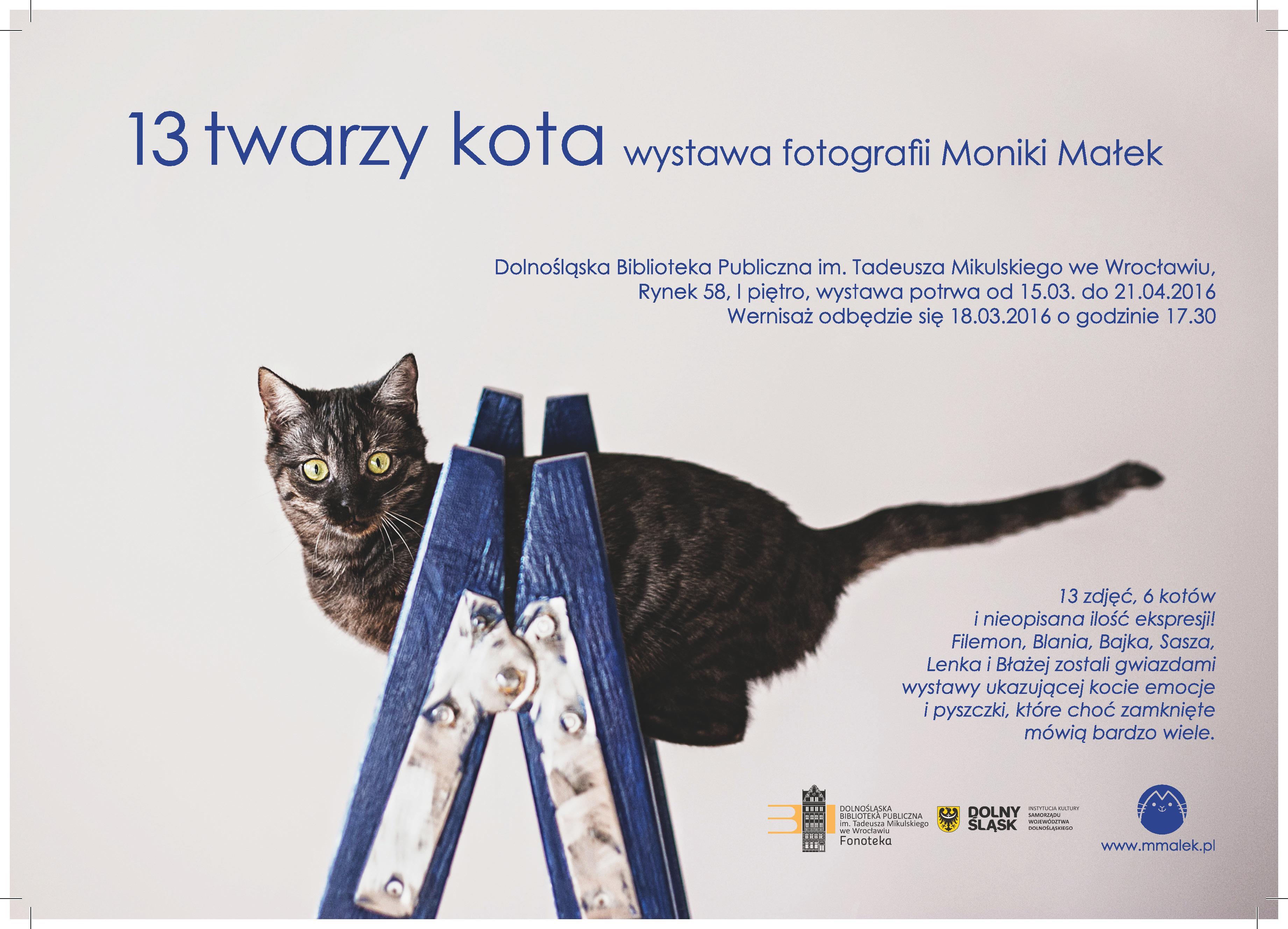 13 twarzy kota – Wystawa fotografii Moniki Małek