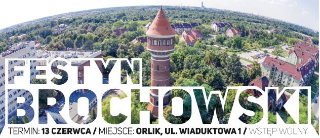 XXI Festyn Brochowski