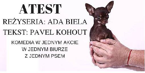 """Spektakl komediowy """"Atest"""" - Teatr Ej Aj kończy sezon"""