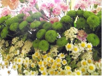 Święto Kwiatów i 4. Święto ulicy Odrzańskiej