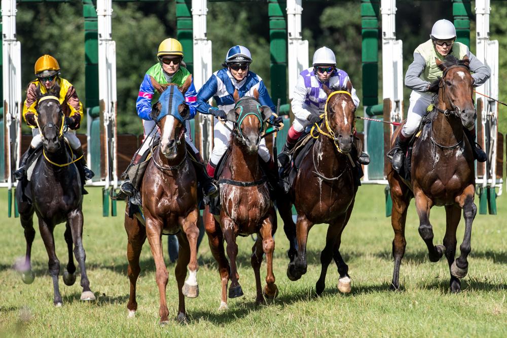 Początek nowego sezonu wyścigów konnych na Partynicach
