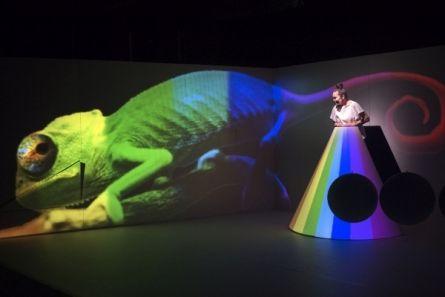 Plama – spektakl dla dzieci