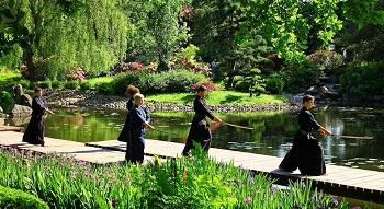 Wiosenne spotkanie z Japonią w Ogrodzie Japońskim
