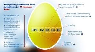 Sprawdź, jakie jajka kupujesz na święta