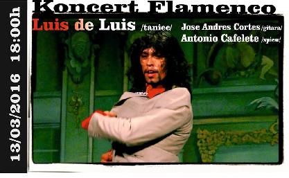 Koncert Flamenco w Synagodze Pod Białym Bocianem