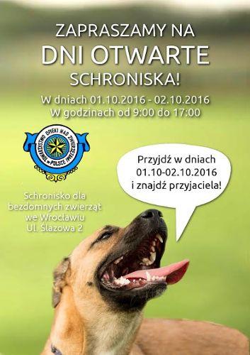 Dni Otwarte Schroniska dla Bezdomnych Zwierząt
