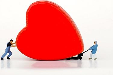 Poznaj swoje serce w Humanitarium
