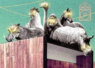 Zwierzaki na Dachu