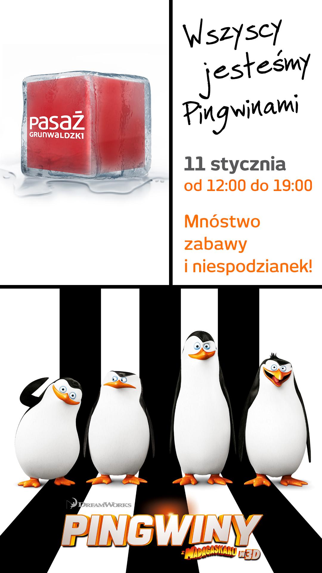 Spotkanie z Pingwinami w Pasażu Grunwaldzkim