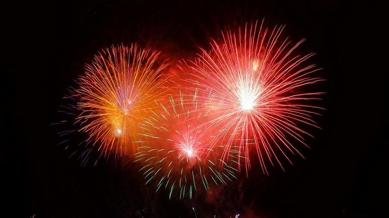 Hałas towarzyszący wystrzeliwanym fajerwerkom to olbrzymi stres dla zwierząt. Jak możemy im pomóc spokojniej przeżyć Sylwestra?, fot. Pixabay.com